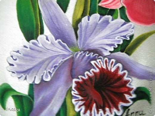Это орхидеи поближе фото 1