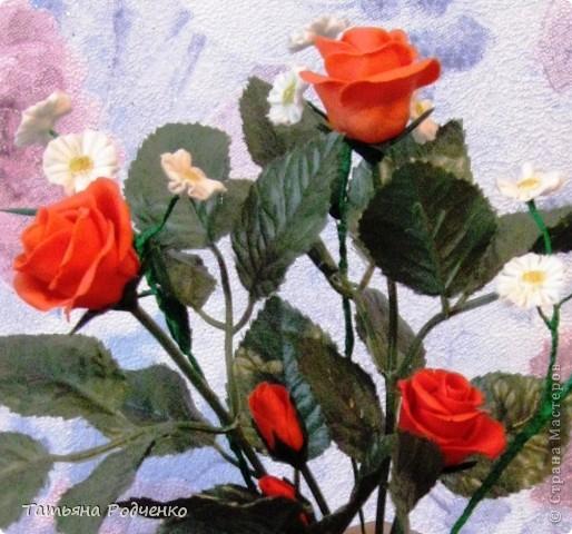 Розы. ХФ фото 2