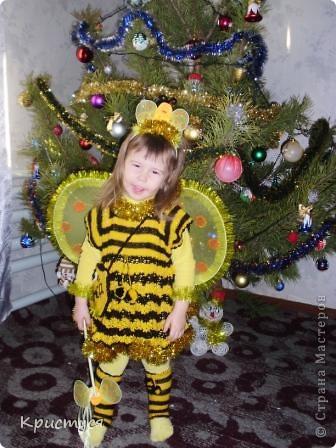 Пчелуня  фото 1