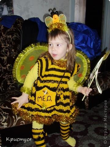 Пчелуня  фото 2