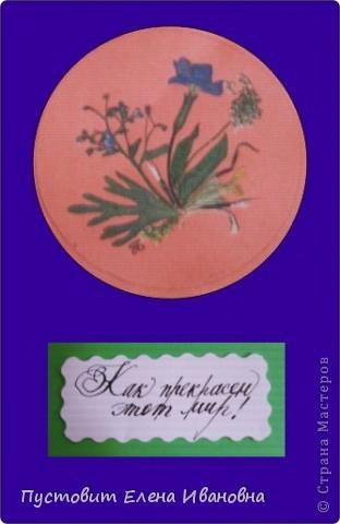 """Серия моих открыток""""Как прекрасен этот мир!"""" в технике ошибана. фото 7"""