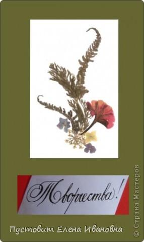 """Серия моих открыток""""Как прекрасен этот мир!"""" в технике ошибана. фото 8"""