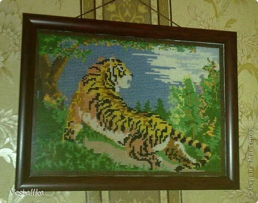 Тигр ррр =)