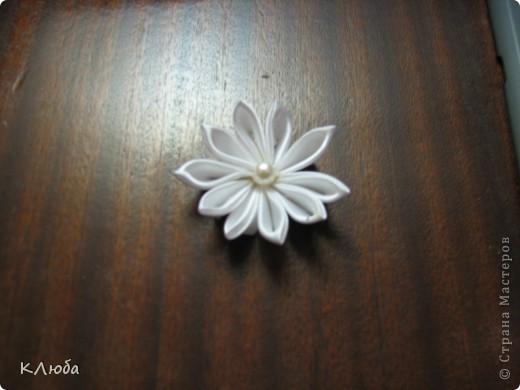 Мой первый цветочек фото 1