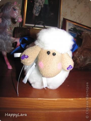 моя первая овечка Доля!=) фото 1