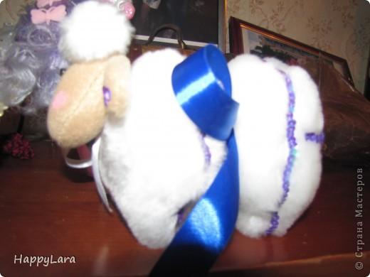 моя первая овечка Доля!=) фото 3