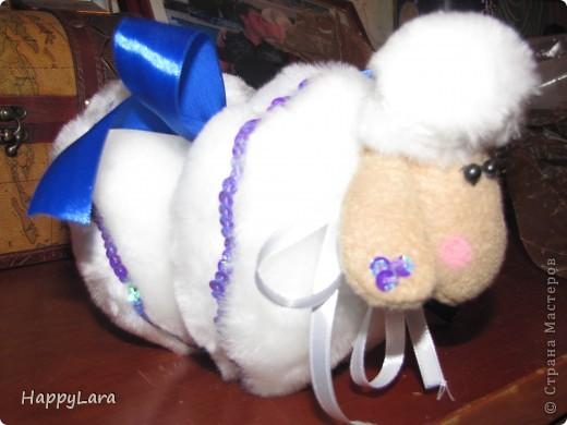 моя первая овечка Доля!=) фото 6