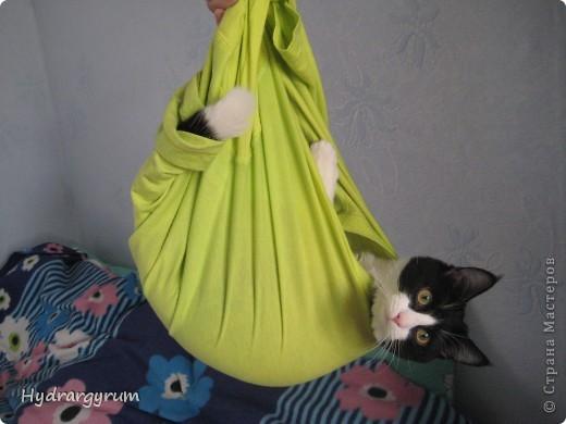 Кот Плюха с хомячкой МыЩью фото 9