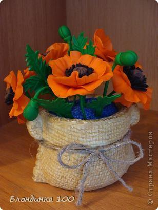 Во время новогодней кутерьмы захотелось лета! Натурой служил мак на пакетике семян. фото 1