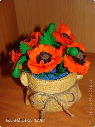 Во время новогодней кутерьмы захотелось лета! Натурой служил мак на пакетике семян. фото 2