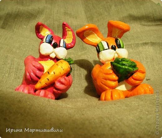 Братья кролики фото 2