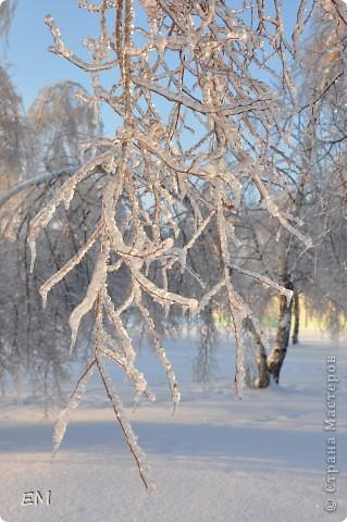 Предпоследний день уходящего года или красота природы. С Наступающим Вас - жители страны!!! фото 6