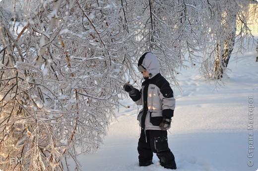 Предпоследний день уходящего года или красота природы. С Наступающим Вас - жители страны!!! фото 7