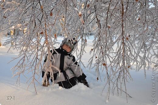 Предпоследний день уходящего года или красота природы. С Наступающим Вас - жители страны!!! фото 8