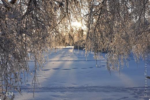 Предпоследний день уходящего года или красота природы. С Наступающим Вас - жители страны!!! фото 9