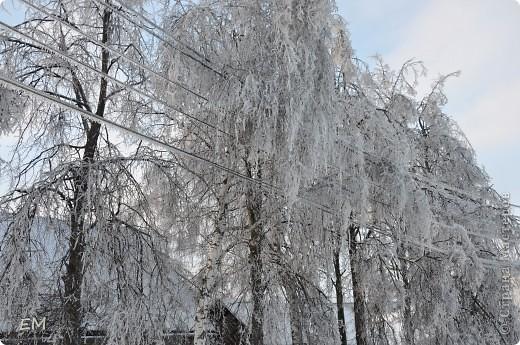 Предпоследний день уходящего года или красота природы. С Наступающим Вас - жители страны!!! фото 11