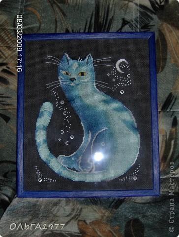 """""""Лунный кот"""".  Остались только фото. Работа подарена подруге. фото 1"""