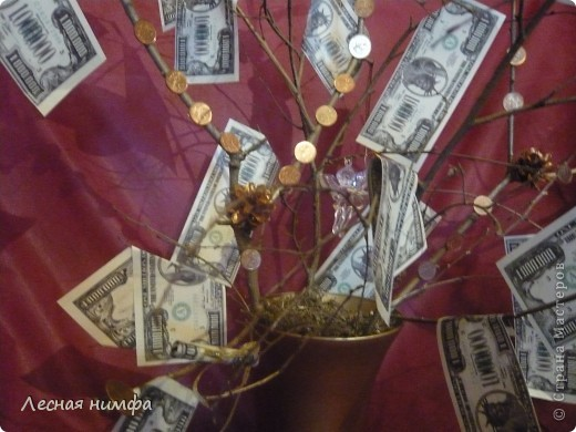 Вот токое денежное дерево я решила сделать для своего любимого человека... фото 3