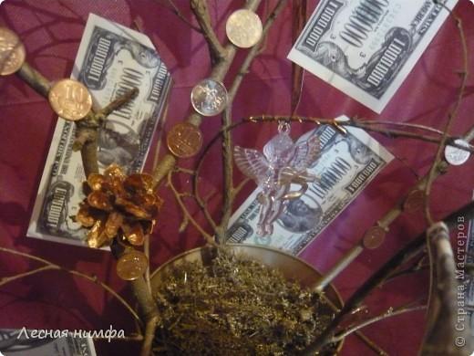 Вот токое денежное дерево я решила сделать для своего любимого человека... фото 4