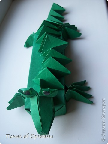 Крокодил – это один из видов больших водных рептилий, обитающих, как правило, в  тропиках. Полагают, что они  мало изменились со времен динозавров.  Эту оригами композицию крокодила я придумала сама специально для наших занятий с детьми. Ее основа - удлиненная коробочка, похожая на пенал. Ее величина вполне позволяет поместиться карандашам и ручкам стандартной длины. Автором головы крокодила является Поль Джексон из Англии. Между прочим, она хищно клацает челюстями и запросто ухватит за палец, если  осторожно надавить на «щечки»:).  Для нее были использованы пять квадратов, размером 20х20. Два из них сгодятся для  коробочки-основы. Два других разделить на равные восемь частей (каждый лист на четыре равных квадрата). Четыре из них размером 10х10 пойдут на лапки и один - на голову.  Еще один квадрат разделим на равные четыре полоски – три из них будут использованы для гофрированной спинки и хвоста. фото 40