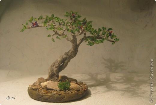 Очень хочется туда, где  +30  и выше , потому вот такое дерево вышло , с мыслями об Индии :)))  фото 1
