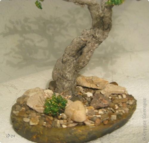 Очень хочется туда, где  +30  и выше , потому вот такое дерево вышло , с мыслями об Индии :)))  фото 6