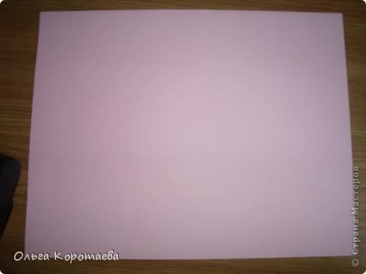 Закладки фото 1