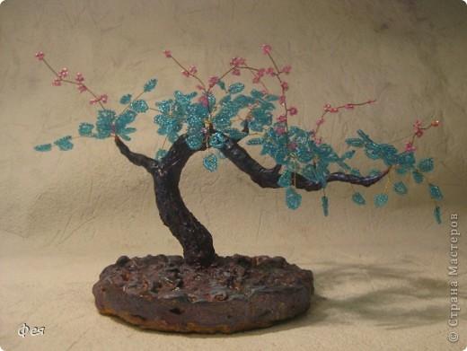 Мне почему то кажется,что деревце марсианское :) фото 4