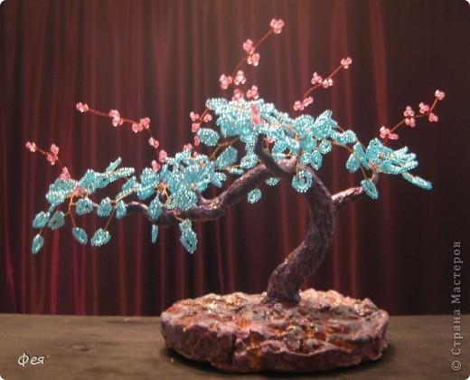 Мне почему то кажется,что деревце марсианское :) фото 1
