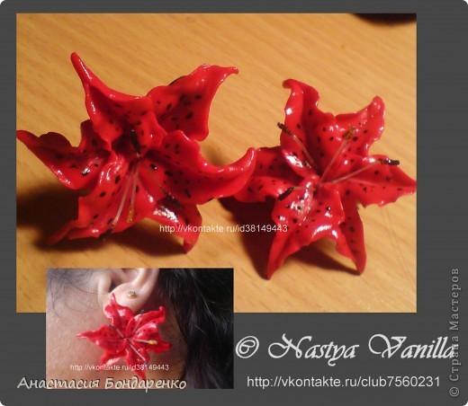 Лилии покорившие сердца каждого кто держал их в руках(3пары) фото 3