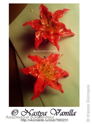 Лилии покорившие сердца каждого кто держал их в руках(3пары) фото 1