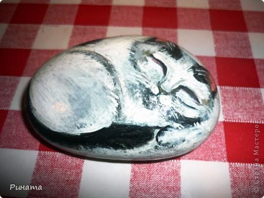 Моя самая первая работа по рисованию на камнях.  фото 1