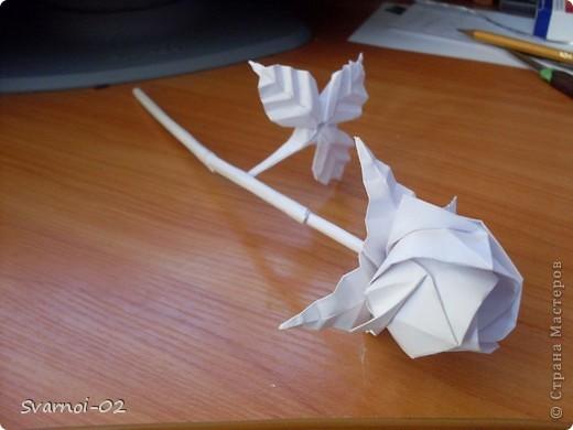 Поделка изделие Оригами Роза в