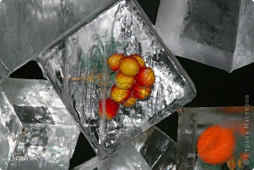 При входе была вот такая аллея с живыми цветами, вмороженными в рамки. Очень красиво!!! фото 12