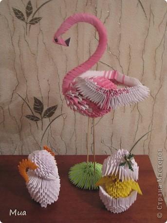 Фламинго, овечка, цыпленок фото 1