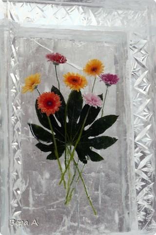 При входе была вот такая аллея с живыми цветами, вмороженными в рамки. Очень красиво!!! фото 1