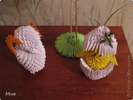 Фламинго, овечка, цыпленок фото 2