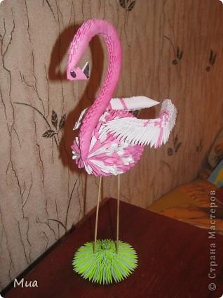 Фламинго, овечка, цыпленок фото 5