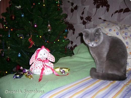 Вот такая вот зайка - подарок любимой крестнице. Внутри - конфетки и мандаринки.  фото 6