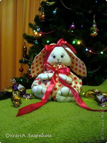 Вот такая вот зайка - подарок любимой крестнице. Внутри - конфетки и мандаринки.  фото 1