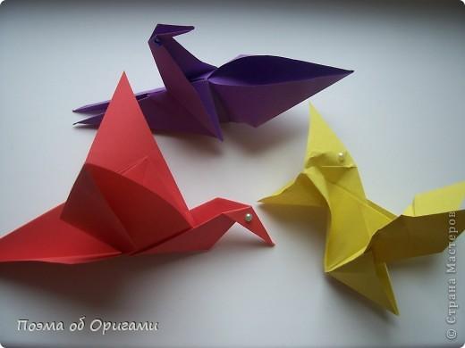 Двигающиеся модели неспроста пользуются большим успехом. Обычный сложенный квадрат способен буквально ожить в руках мастера. Каждая из этих трех птичек умеет делать что-то свое.  Желтый птенец, как и подобает птичьим малышам - постоянно голоден, а потому, характерно для этого, то открывает широко клюв, то лишь ненадолго его прикрывает. Его придумал Хуан Гимено из Испании. Красная птица умеет махать крыльями. В своем мастерстве она по праву считается одной из лучших в мире, так как ее крылья во время полета совершают широкие взмахи, почти сходясь сверху и снизу тела. Ее придумал Самуэль Рандлетт из США. Синяя птица умеет ловко клевать зернышки из кормушки. Эта модель, в отличии от предыдущих, известна очень давно и легко складывается с небольшой вариацией из классической модели журавлика. Вся конструкция крепится к ленте с помощью не больших канцелярских прищепочек.  В любой момент каждая из них готова от нее оторваться, что бы с радостью заняться своим излюблиным занятием в Ваших руках. фото 28