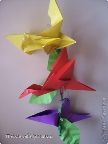 Двигающиеся модели неспроста пользуются большим успехом. Обычный сложенный квадрат способен буквально ожить в руках мастера. Каждая из этих трех птичек умеет делать что-то свое.  Желтый птенец, как и подобает птичьим малышам - постоянно голоден, а потому, характерно для этого, то открывает широко клюв, то лишь ненадолго его прикрывает. Его придумал Хуан Гимено из Испании. Красная птица умеет махать крыльями. В своем мастерстве она по праву считается одной из лучших в мире, так как ее крылья во время полета совершают широкие взмахи, почти сходясь сверху и снизу тела. Ее придумал Самуэль Рандлетт из США. Синяя птица умеет ловко клевать зернышки из кормушки. Эта модель, в отличии от предыдущих, известна очень давно и легко складывается с небольшой вариацией из классической модели журавлика. Вся конструкция крепится к ленте с помощью не больших канцелярских прищепочек.  В любой момент каждая из них готова от нее оторваться, что бы с радостью заняться своим излюблиным занятием в Ваших руках. фото 36