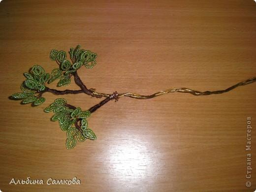 Сделала первое дерево. Высота 31 см. Яблоки из соленого теста, расписывала по МК Марины Архиповой, за что ей большое спасибо. фото 12