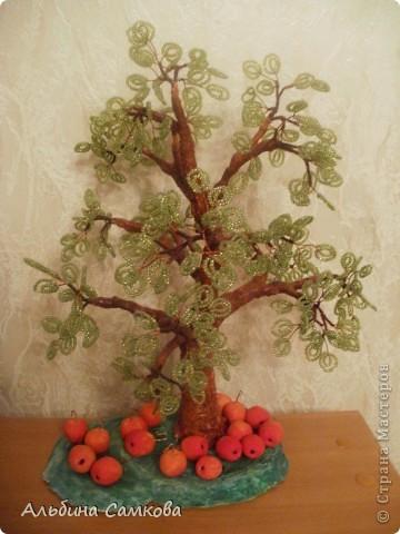 Сделала первое дерево. Высота 31 см. Яблоки из соленого теста, расписывала по МК Марины Архиповой, за что ей большое спасибо. фото 2