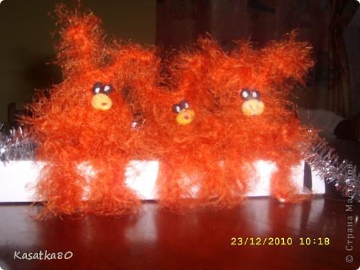 Мои чумовые зайцы!