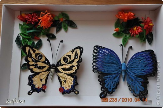 Еще бабочка фото 3