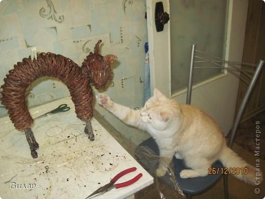 Вот такого котика сделала на Новый год. фото 4
