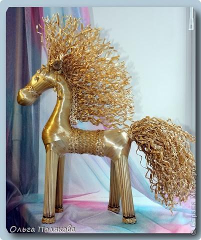 Это кучерявое чудо зовут Конь Яшка. фото 1