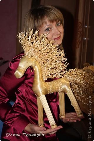 Это кучерявое чудо зовут Конь Яшка. фото 3