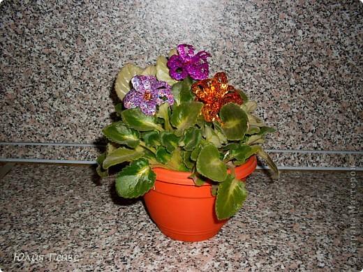 А вот и цветы!